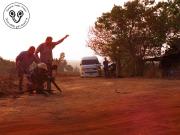 Indochinese Spitting Cobra Naja siamensis Nasi012 filmed by BBC crew