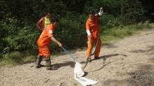 Bagging Oriental Rat Snake P. mucosa
