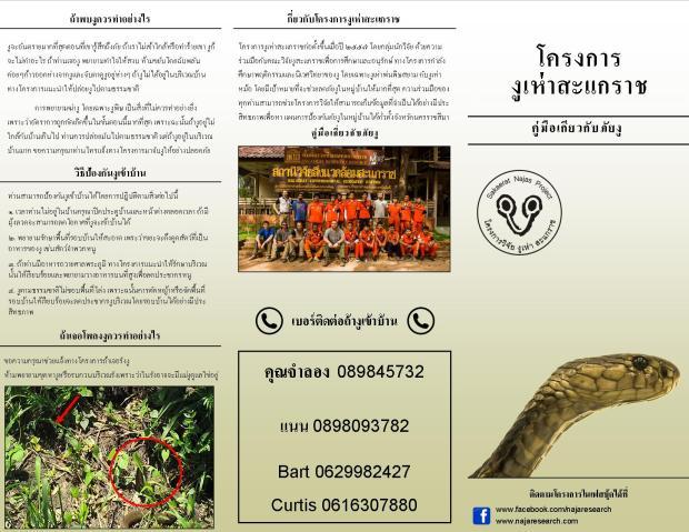 flyer latest version